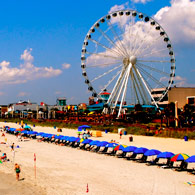 Things to do with the kids in Myrtle